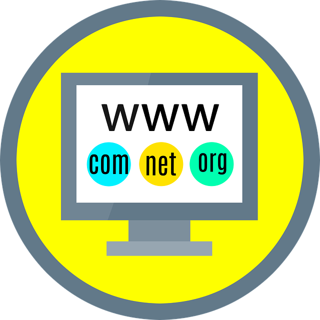 learn how to purchase a domain name for your business site